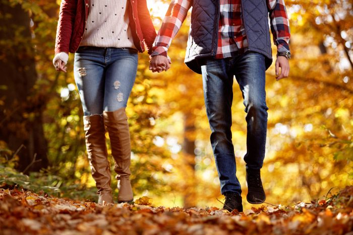 Herbstblätter – Angebot