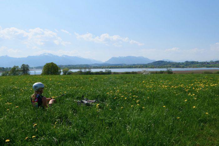 Sommerwiesen-Angebot zum Schildhauer